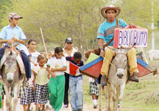 Biblioburro: The Donkey Library